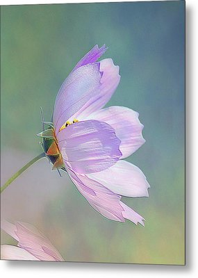 Flowing In The Wind Metal Print by Elaine Manley