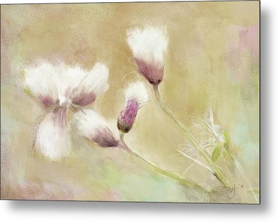 Fluffy Thistle Metal Print