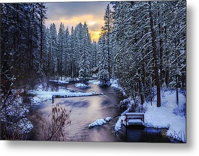 Fly Fisherman On The Metolius Metal Print