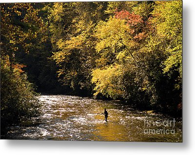 Metal Print featuring the photograph Fly Fisherman On The Tellico - D010008 by Daniel Dempster