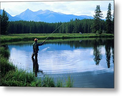 Fly Fishing In Rocky Mountain National Park Metal Print by Peter Skiba