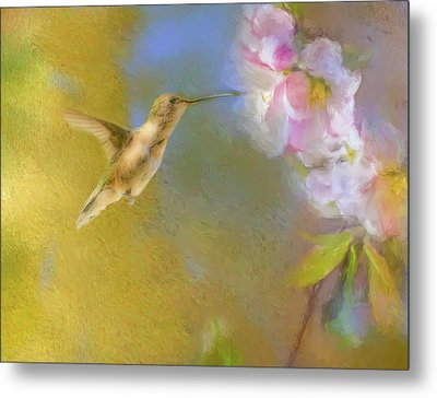 Fly In Metal Print by Ches Black