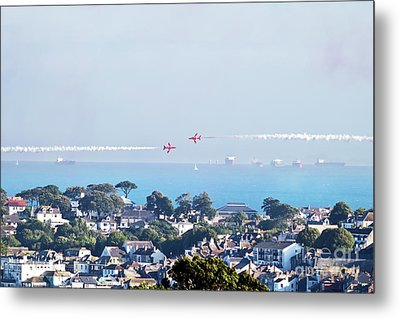 Fly Past Metal Print