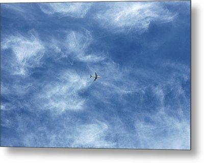 Flying Away Metal Print by Richard Newstead