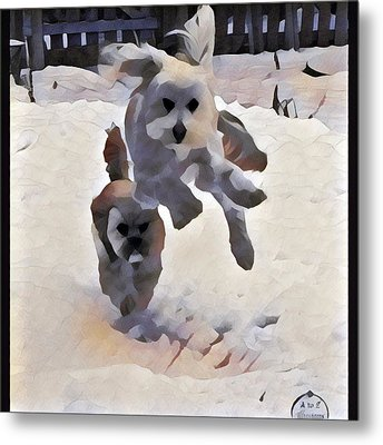 Flying Dog Metal Print