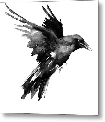 Flying Raven Metal Print by Suren Nersisyan