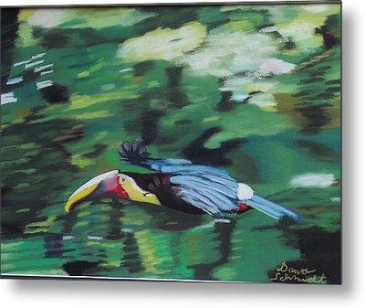Flying Toucan In Costa Rica Metal Print
