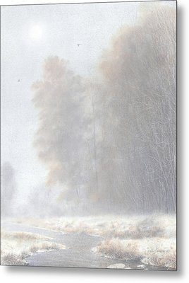 Fog And Frost Metal Print by Ken Johnston