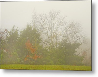 Metal Print featuring the photograph Fog In Autumn by Wanda Krack