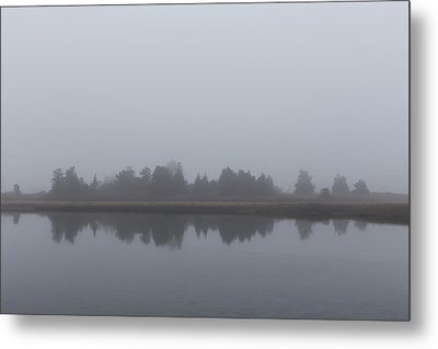 Metal Print featuring the photograph Fog On The Marsh by Andrew Pacheco