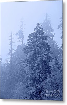Metal Print featuring the photograph Fog On The Mountain by John Stephens
