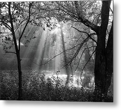 Fog Rays Metal Print by Betsy Zimmerli