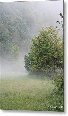 Fog Rising Metal Print