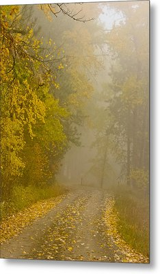 Foggy Autumn Morn Metal Print by Albert Seger