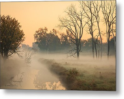 Foggy Fall Morning On Gary Avenue Metal Print by Joni Eskridge