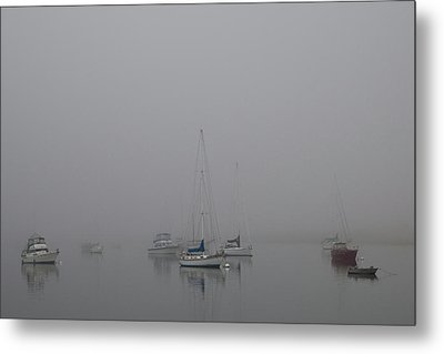 Waiting Out The Fog Metal Print by David Chandler