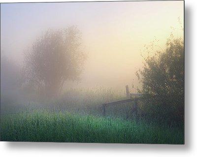 Metal Print featuring the photograph Foggy Morning by Dan Jurak