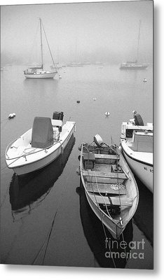Foggy Morning In Cape Cod Black And White Metal Print by Matt Suess