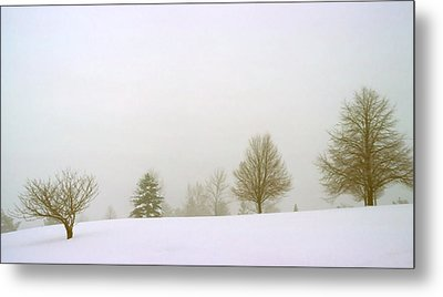 Foggy Morning Landscape 15 Metal Print by Steve Ohlsen