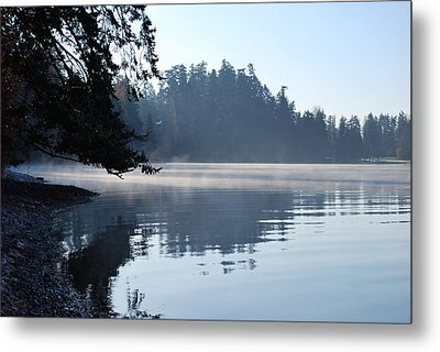 Foggy Morning Metal Print by Sergey and Svetlana Nassyrov