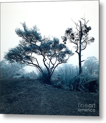 Foggy Mountaintop Metal Print