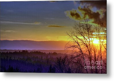 Foggy Sunset Metal Print by Victor K