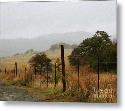 Foggy Wet Morning Metal Print by Robert Ball