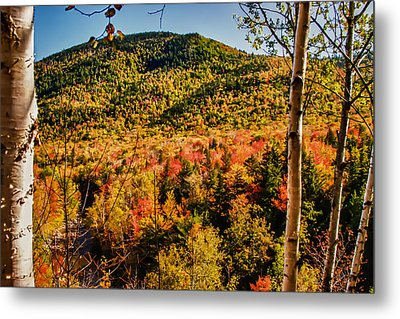 Foliage View From Crawford Notch Road Metal Print by Jeff Folger
