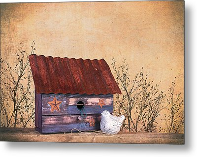 Folk Art Birdhouse Still Life Metal Print