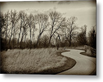Metal Print featuring the photograph Follow The Path by Elvira Butler