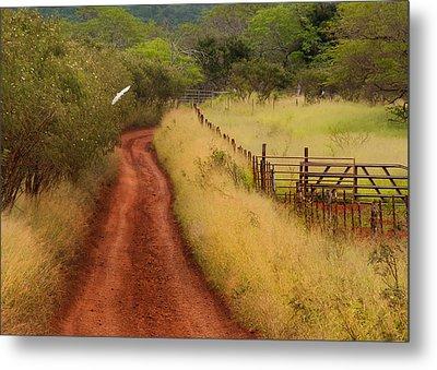 Follow The Red Dirt Road Metal Print