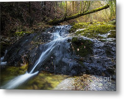 Metal Print featuring the photograph Follow The Stream by Yuri Santin