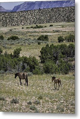 Following Momma Metal Print