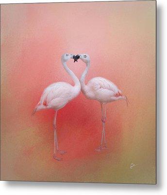 Fond Flamingos Metal Print