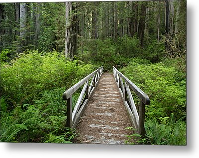 Footbridge Metal Print by Eric Foltz