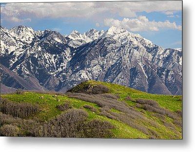 Foothills Above Salt Lake City Metal Print by Utah Images