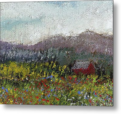 Foothills Meadow Metal Print by David Patterson