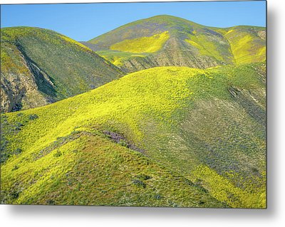 Foothills, Temblor Range Metal Print by Joseph Smith