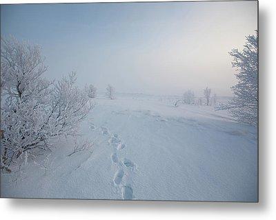 Footprint In Snow Metal Print