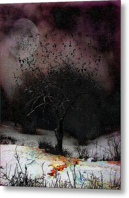 for Sledding and Starlings Metal Print by Mimulux patricia no No