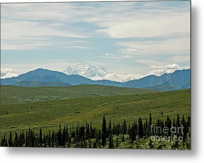 Foreground And Mountain Metal Print