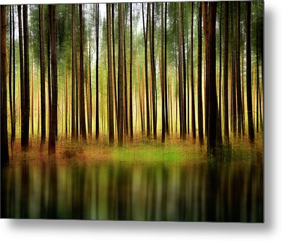 Forest Abstract Metal Print by Svetlana Sewell