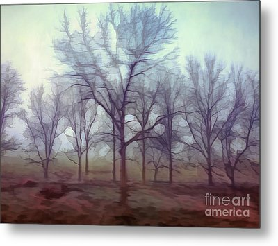 Metal Print featuring the photograph Forest Ballet by Kerri Farley