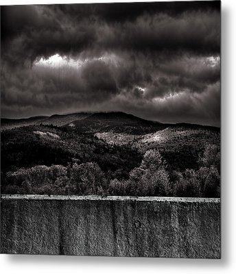 Forest Behind The Wall Metal Print by Bob Orsillo
