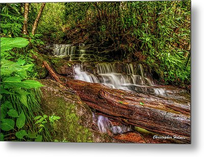 Forest Falls Metal Print by Christopher Holmes
