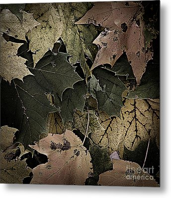 Forest Floor - Leaf 14 Metal Print by Pete Hellmann