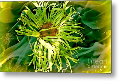 Forest Flower Metal Print by Jason Christopher