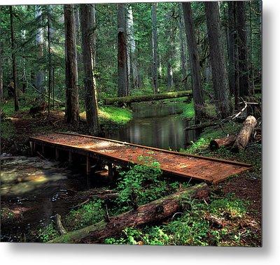 Forest Foot Bridge Metal Print