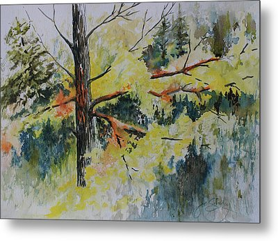 Metal Print featuring the painting Forest Giant by Joanne Smoley