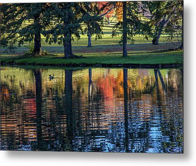 Forest Hill Reflections I Metal Print